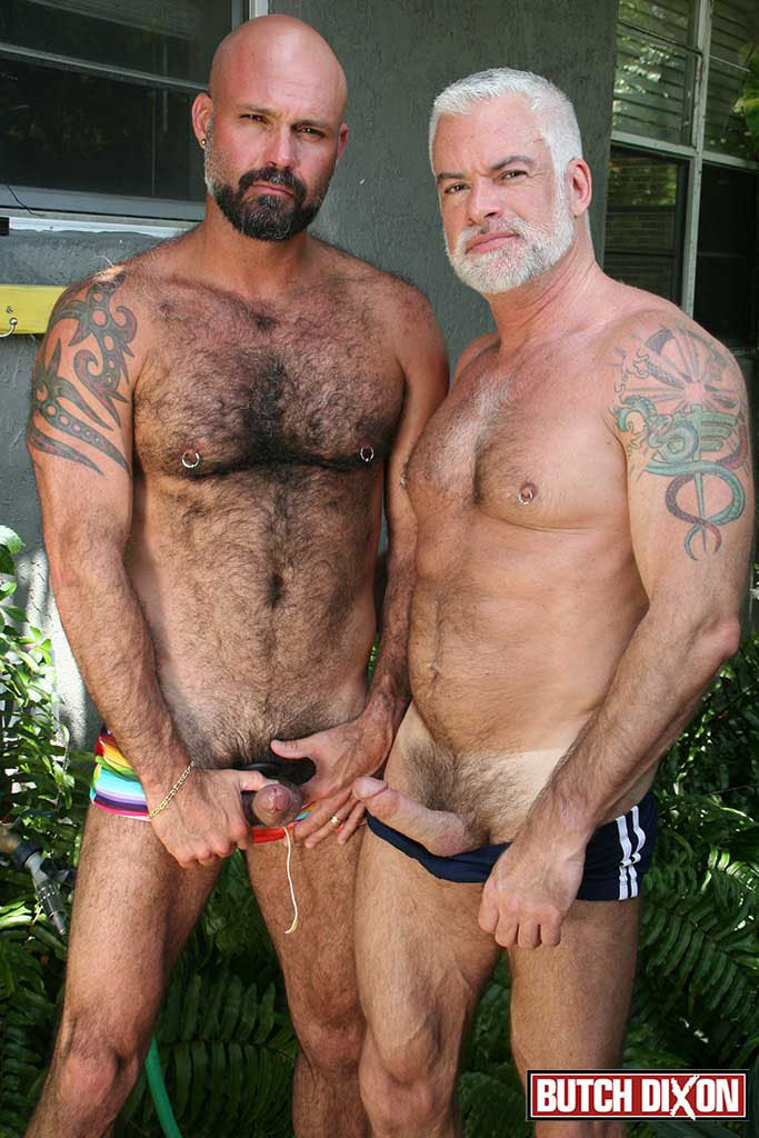 daddy silver Naked gay bears hairy
